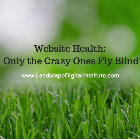 Website Health: Only the Crazy Ones Fly Blind