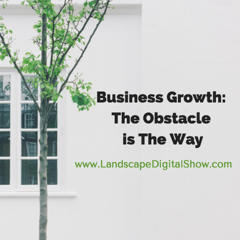 Business Growth: The Obstacle is The Way